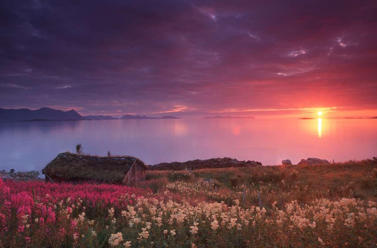 Fra Nupen på nordsida av Harstad, kåret til Norges mest romantiske sted  ©  Frank Andreassen