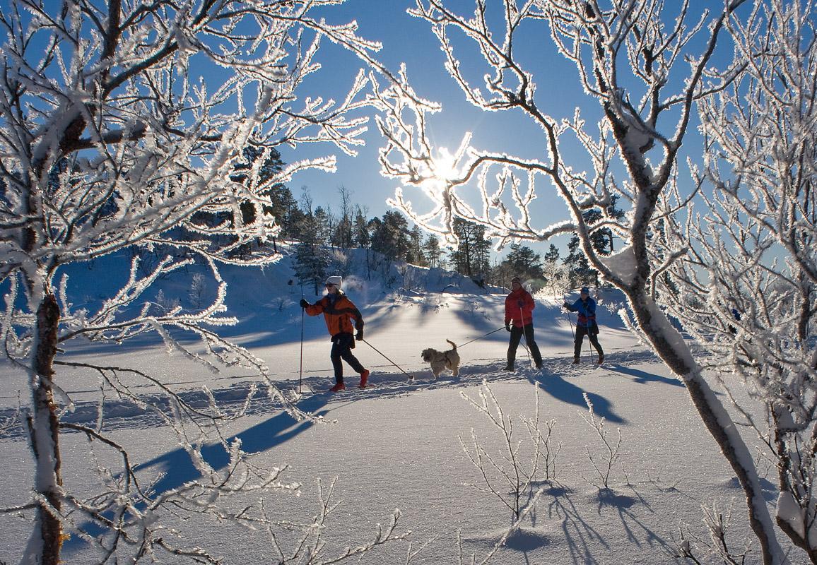 Gnistrende vinterføre ved Bodø © Ernst Furuhatt