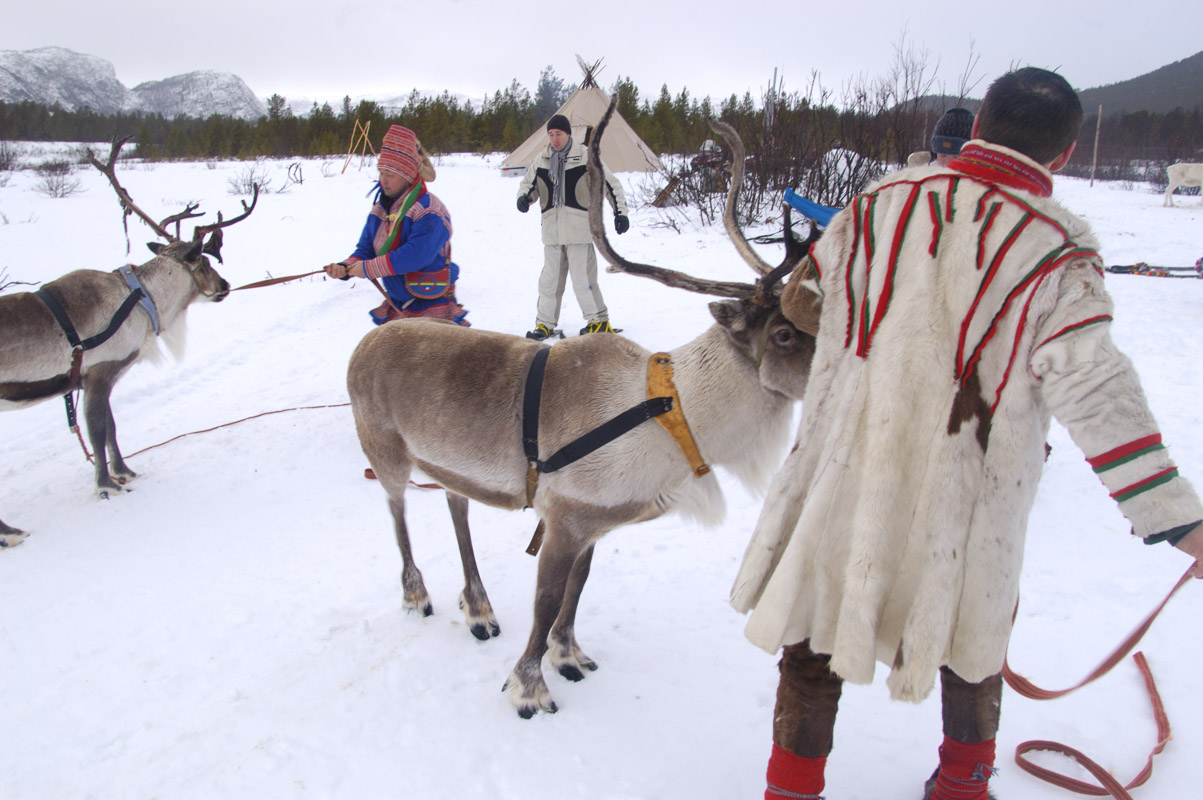 In Alta you can experience both traditional and modern Sami culture (C) Trym Ivar Bergsmo