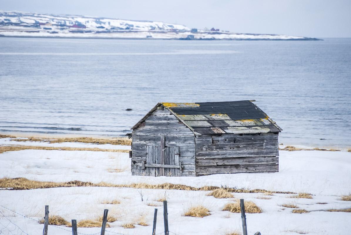 Uthus ved Ekkerøya i Varangerfjorden  © Hege Lysholm / Statens vegvesen