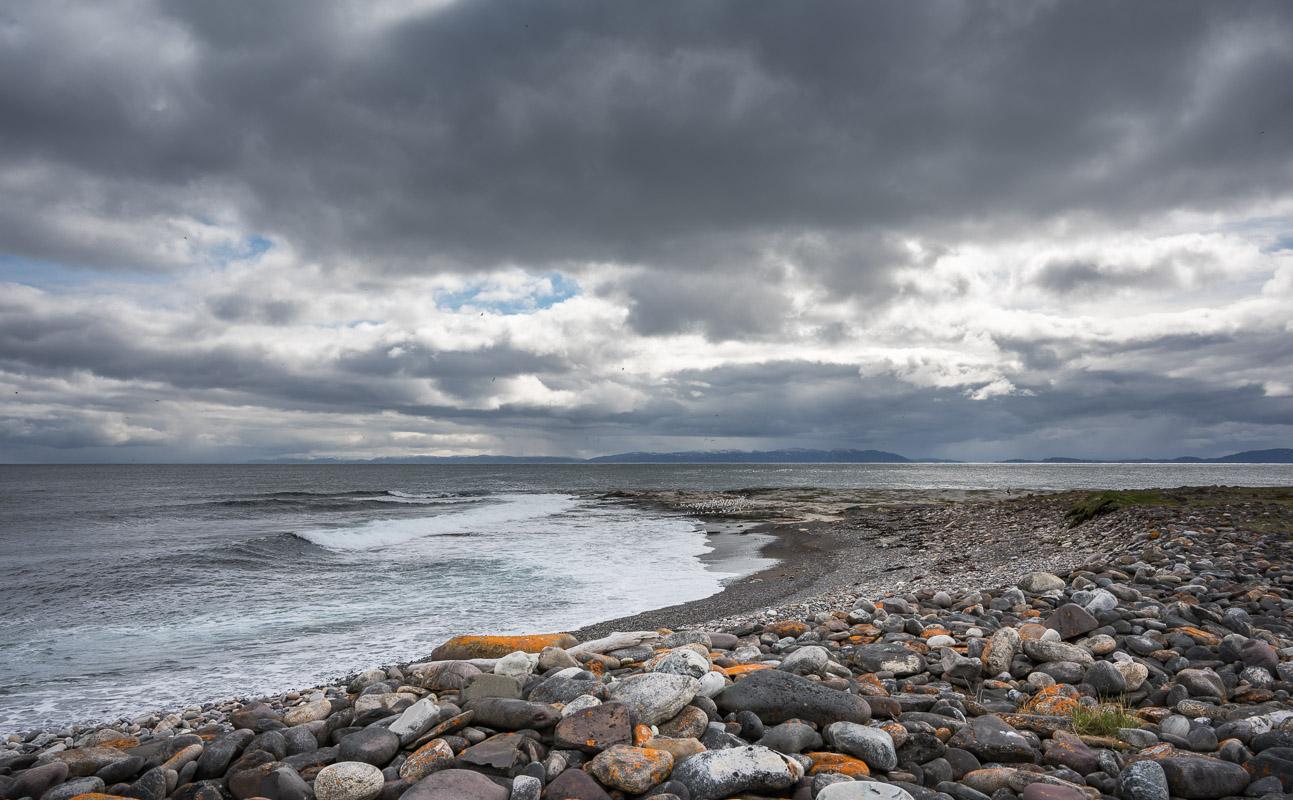Fargerik rullesteinstrand ved Varangerfjorden sør på Ekkerøya.  Foto: Jarle Wæhler, Statens vegvesen