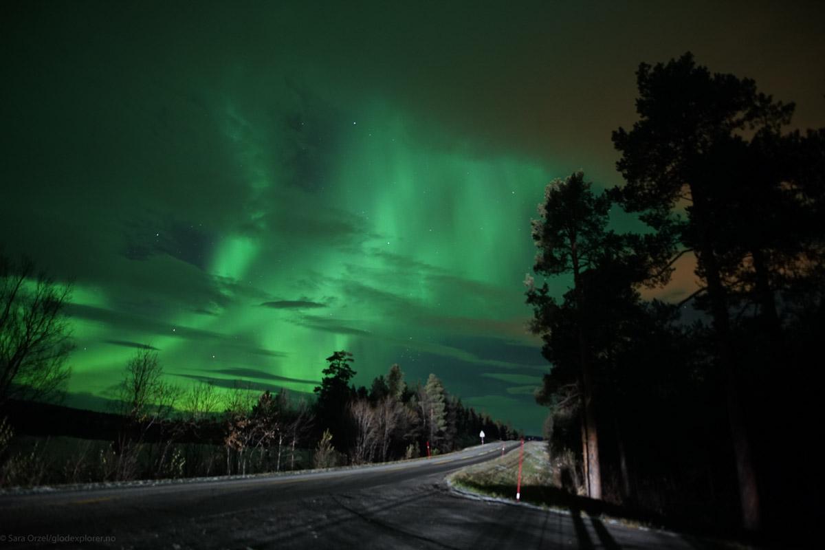 Alta byr på rått nordlys © Glød Explorer