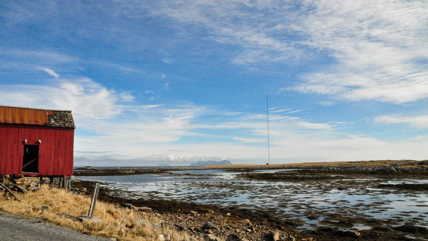 In the Spring the gulls return (c) Knut Hansvold