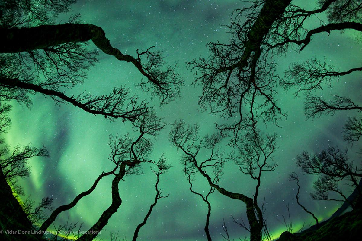 Nordlys er en favoritt blant fotografer for alle kreative mulighetene det gir