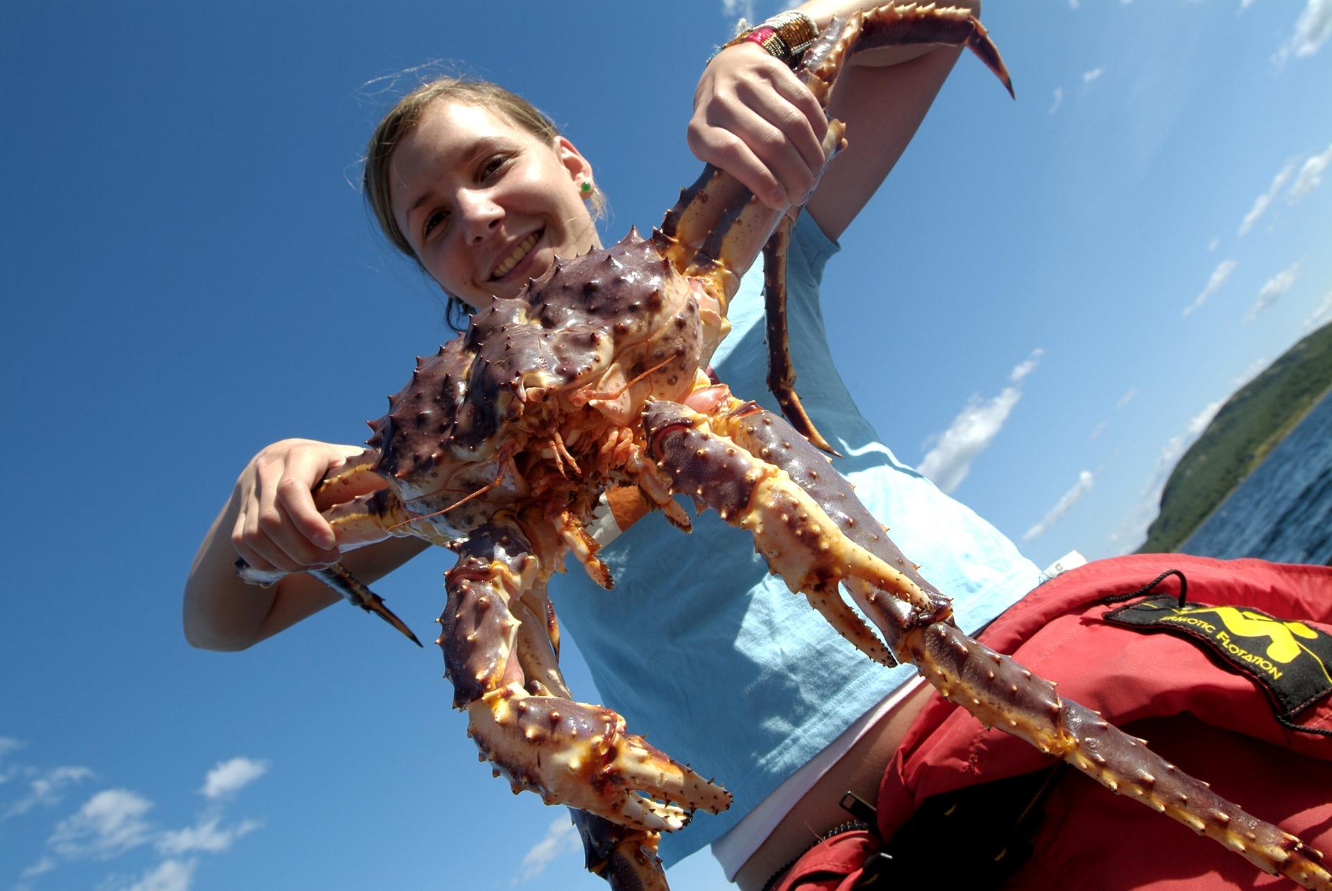 King Crab © Trym Ivar Bergsmo