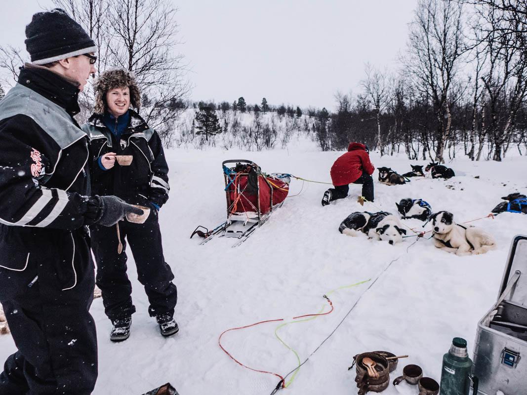 Hundene seles av © Trasti og Trine