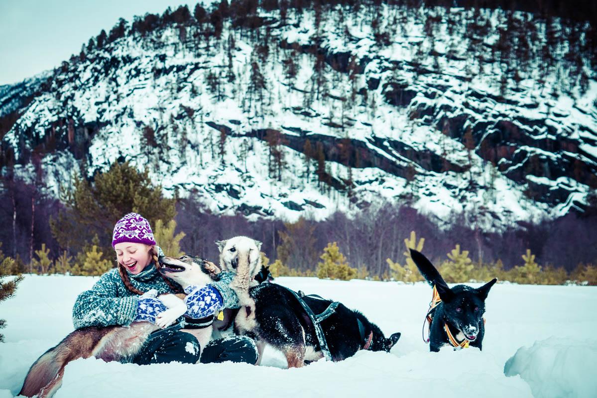 Det er huskyer som løper hos Trasti og Trine © Trasti og Trine