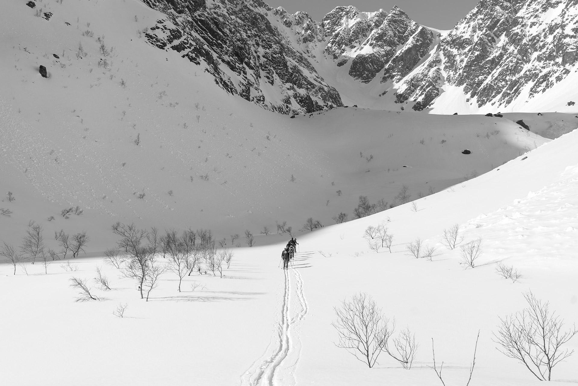 Lyngsalpene © Hendrik Morkel