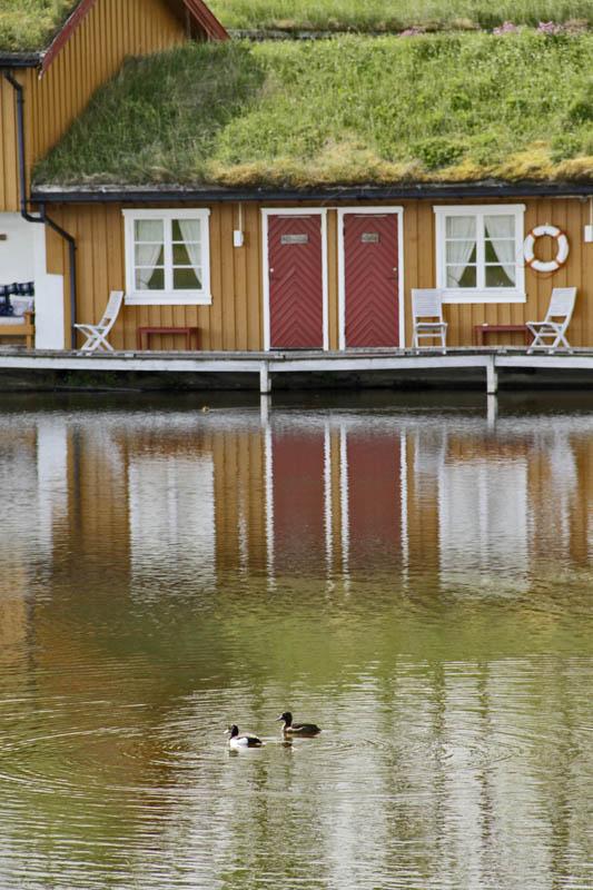 Ender utenfor Vega Havhotell © Tore Schønning Olsen