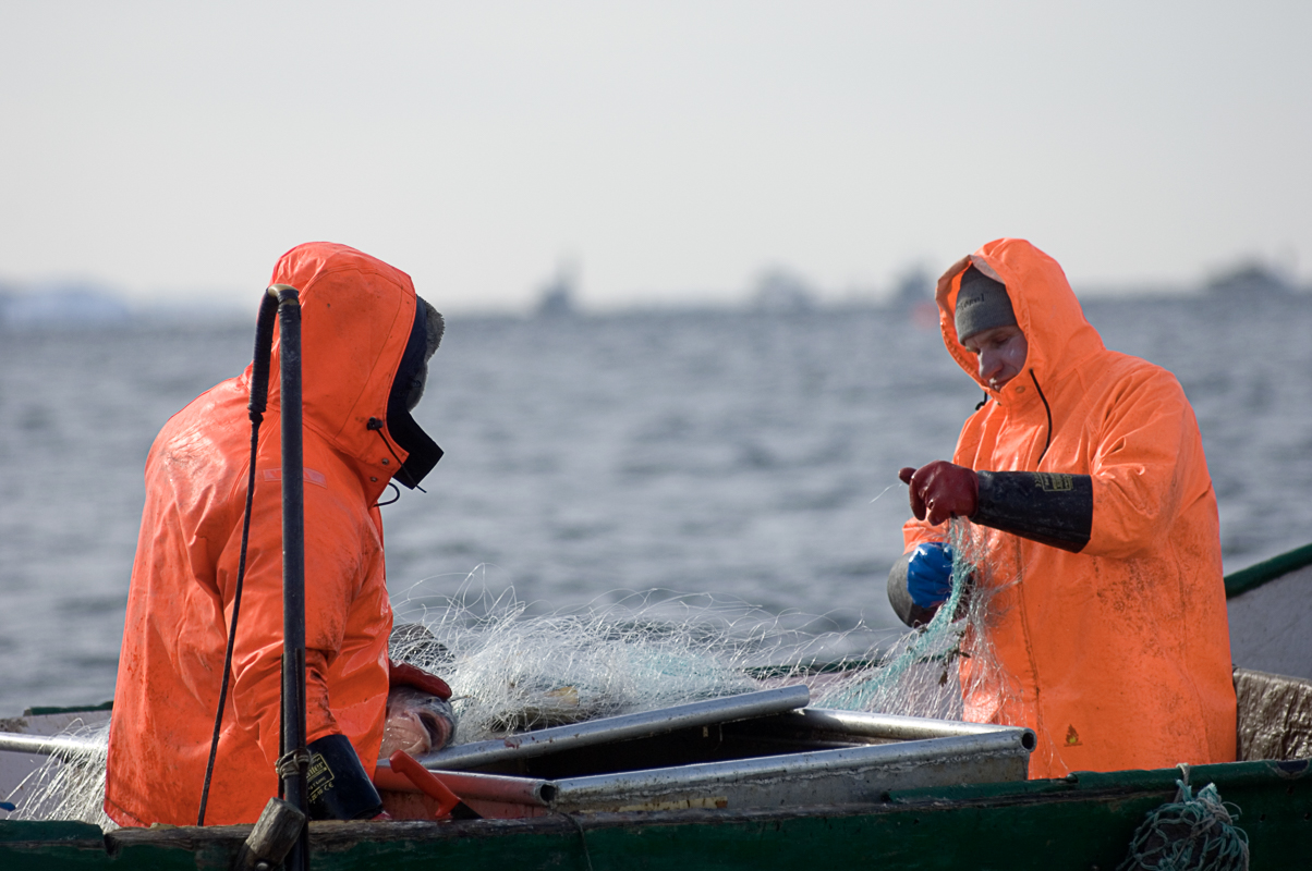 Arbeidet pågår © Terje Rakke/Nordic Life