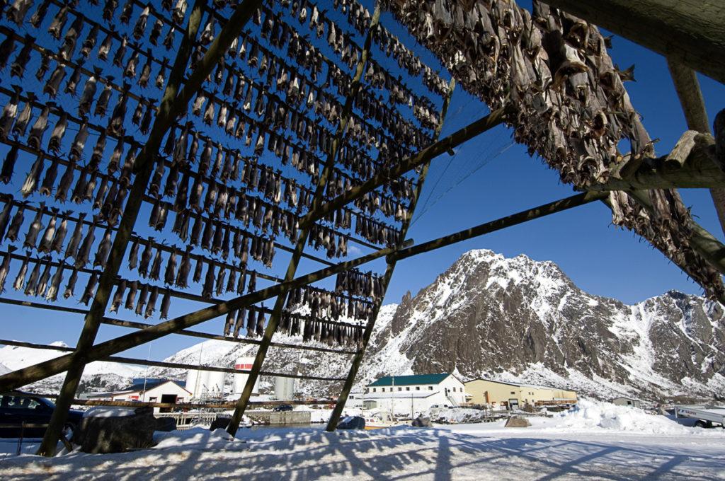 Fishracks (c) Terje Rakke/Nordic LIfe