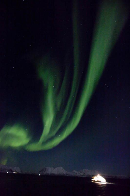 Nordlyset danser på himmelen når hurtigruten seiler forbi (C) Shigeru Ohki
