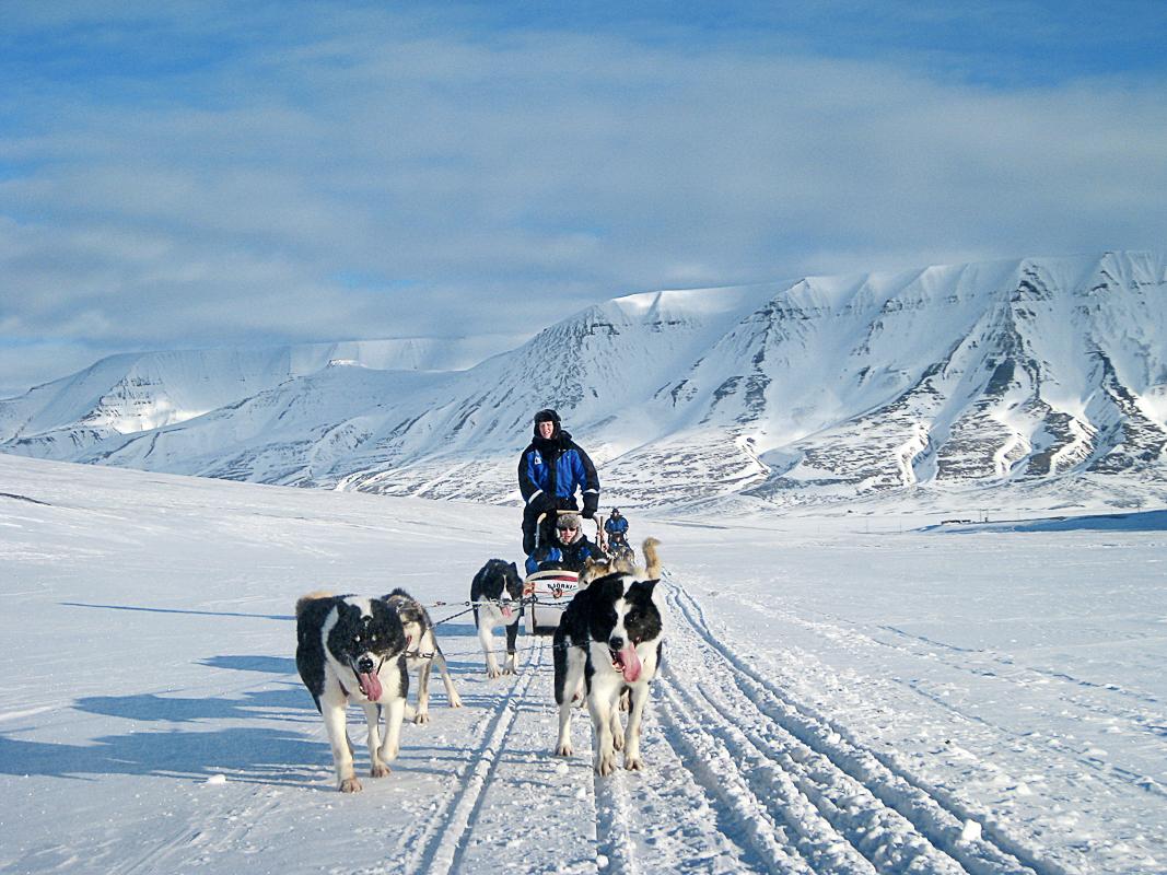 Hundekjøring på Svalbard © Marcela Cardenas