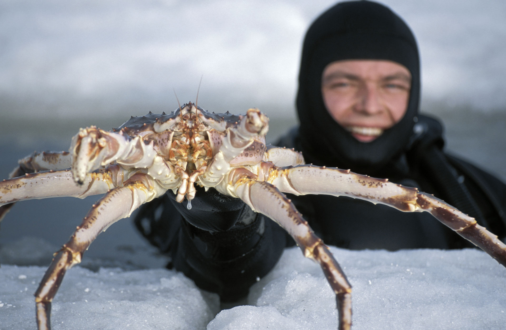 King Crab Fishing (c) Terje Rakke/Nordic Life