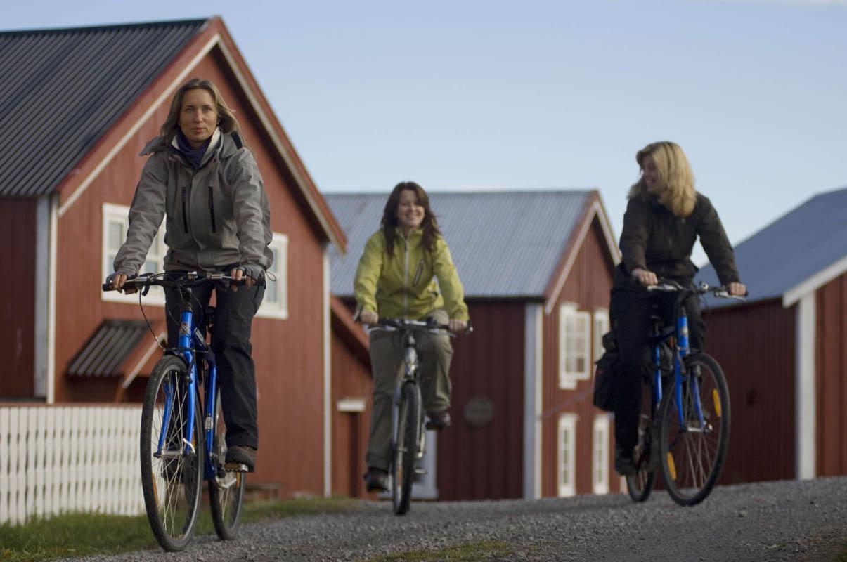 På sykkel på den flate delen av Vega © Terje Rakke