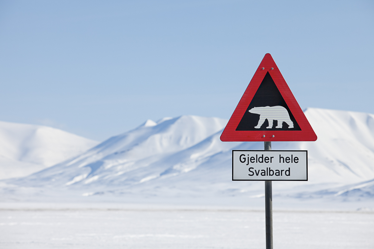 Do not leave town without a guide or a gun © Jarle Røssland
