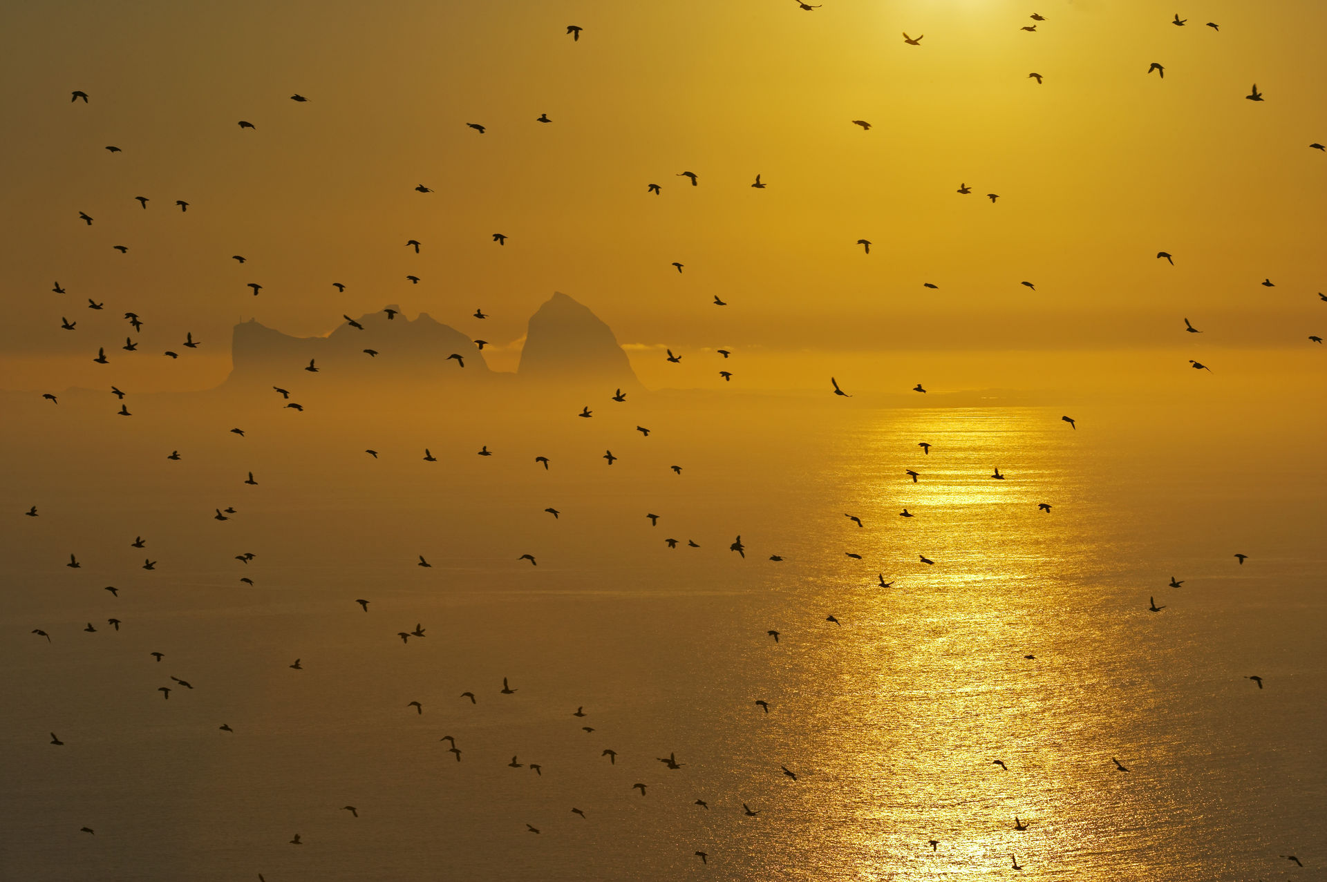 Midnattssol Træna i Nord-Norge og Helgelandskysten