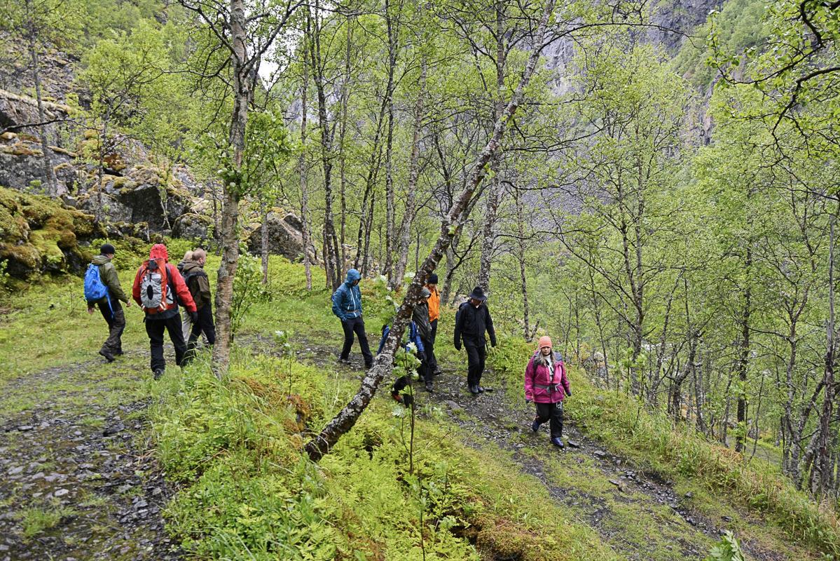 På tur på lette stier nedover Rallarveien © Knut Hansvold