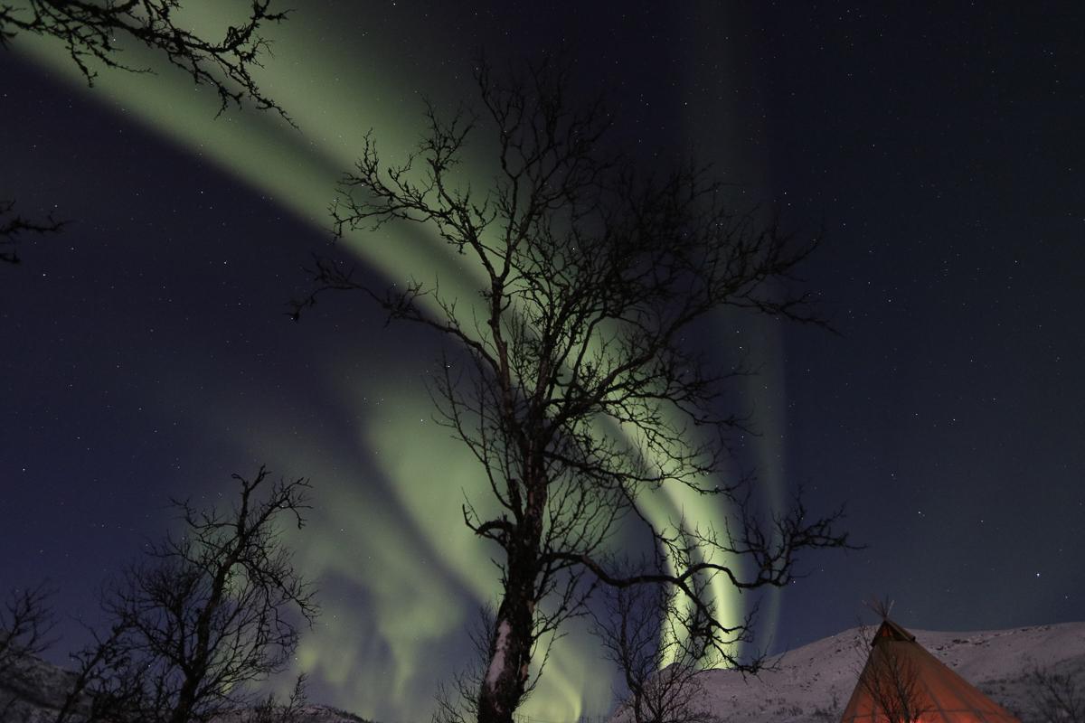 Nordlys over fjelltoppene (c) Rune Dahl