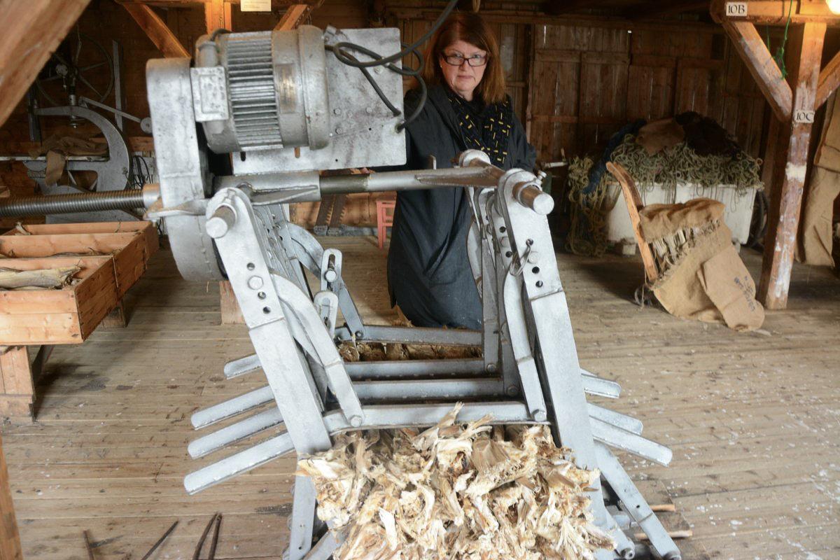Tørrfiskpresse for å lage bunder klare til eksport © Knut Hansvold