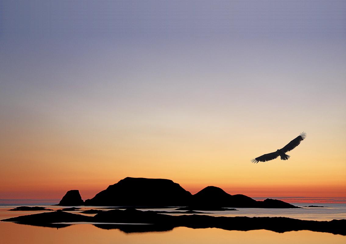 gjesvær nordkapp fuglefjell