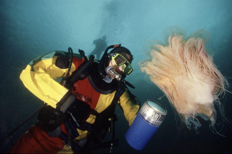 Vannet virvles opp med oksygen og næringsstoff © Vebjørn Karlsen