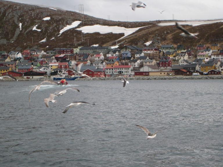 På vei ut fra Kjøllefjord © Nina Smedseng