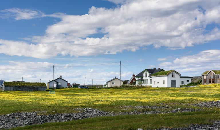 Sommereng og gamle hus med gress på taket i gamle Hamningberg © Fredrik Fløgstad/Statens Vegvesen
