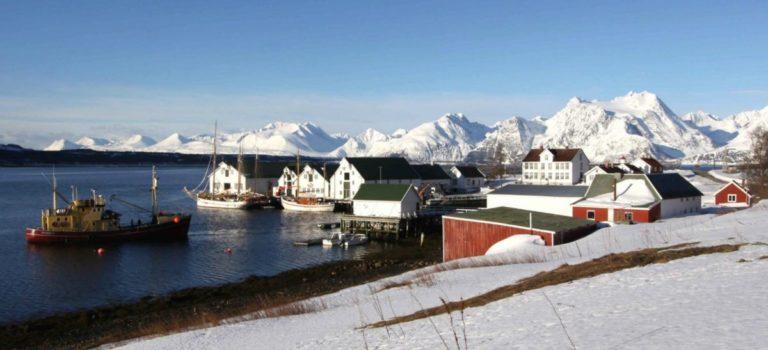 Anlegget om vinteret © Hege Bergfald Jacobsen