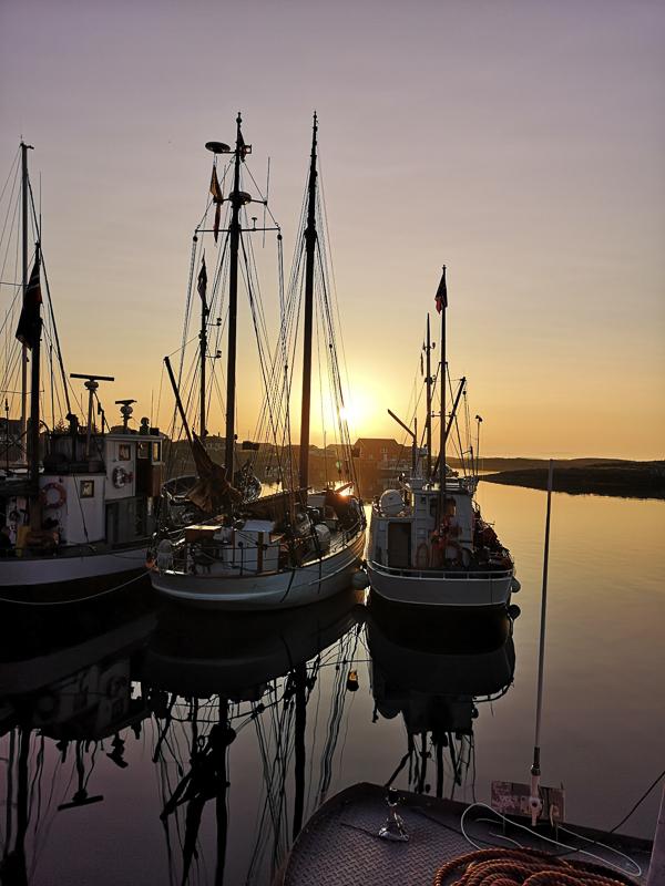Havna med fiskebåter i midnattssol © Lovund Event