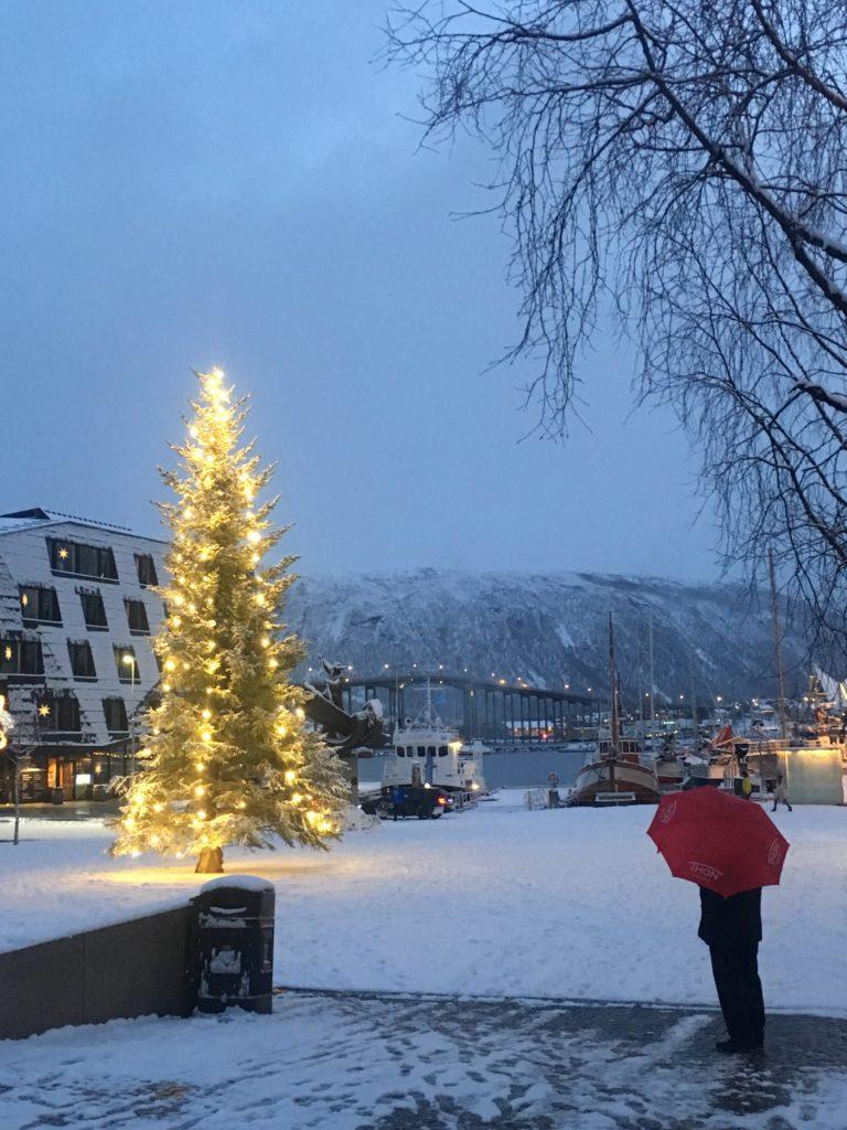 Snø er ikke garantert hele tida før jul, men som regel er det rikelig med snø © William Copeland