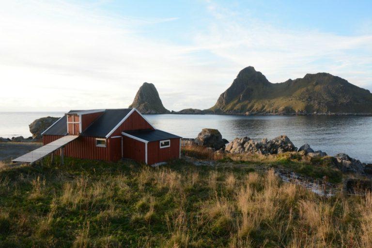 The bird cliffs of Nykan © Knut Hansvold
