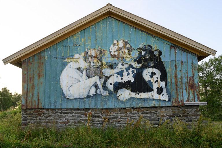 Jordbruksbygda Engeløya gjenspeiler seg i street art'en... © Ernst Furuhatt