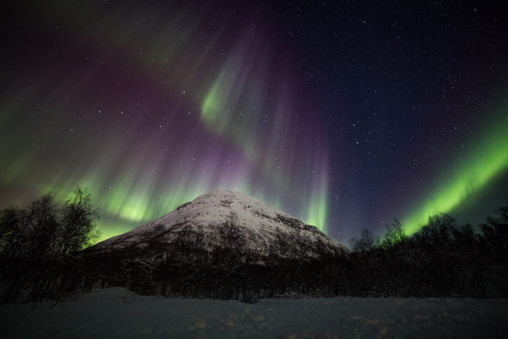 Lyngsfjord Aurora