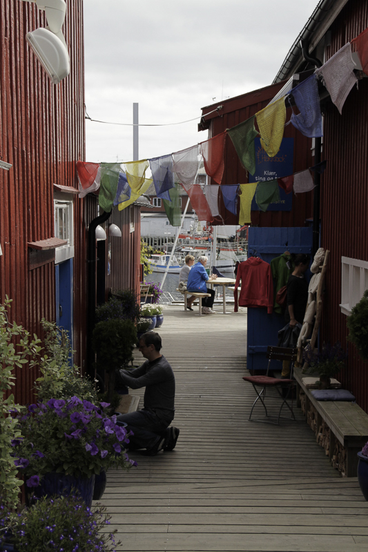 the climbing cafe in henningsvær lofoten