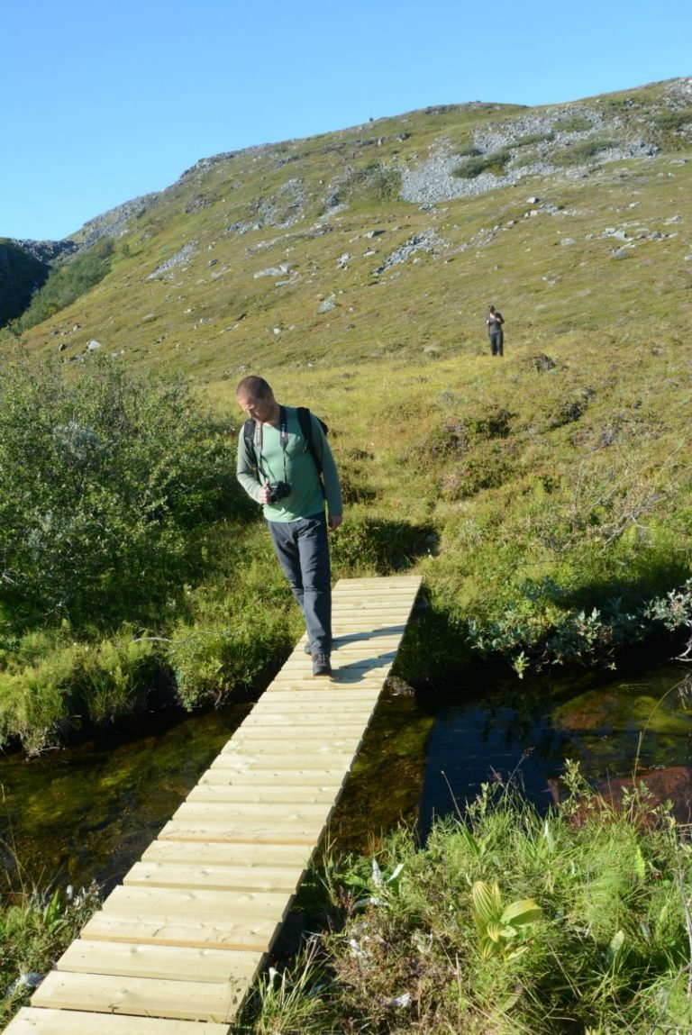 Small bridges protect you from the hidden streams and marshland below © Knut Hansvold
