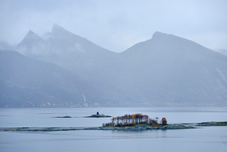 A misty summer day © Jarle Waehler, Statens Vegvesen