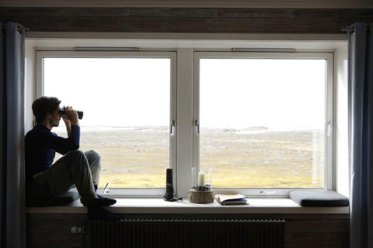 Slapp av inne og studer Svalbard-naturen © Kirsti Ikonen