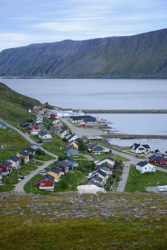 Skarsvåg is a classic Finnmark fishing village with post war architecture © Knut Hansvold