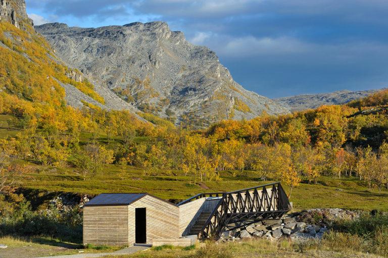 Stoppested i bjørkeskog © Jarle Wæhler/Statens vegvesen
