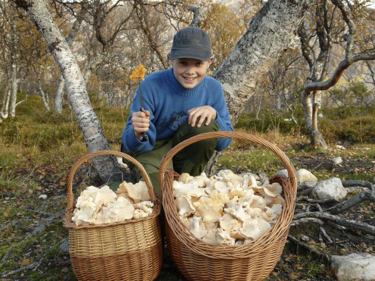 Mushroom picking in September © Ivan Arntzen