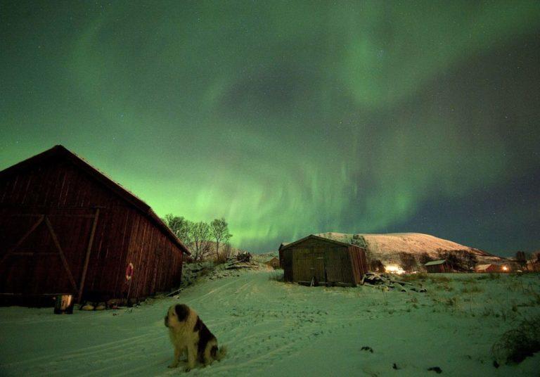 Vent på nordlyset i milde netter © Marten Bril
