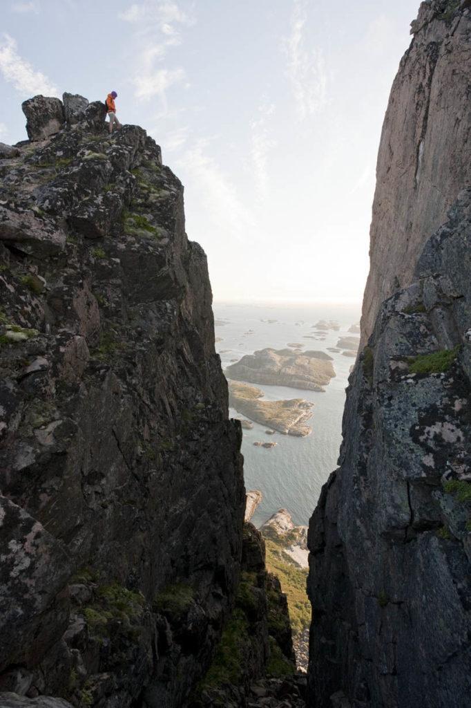 rødøyløva i nordnorge