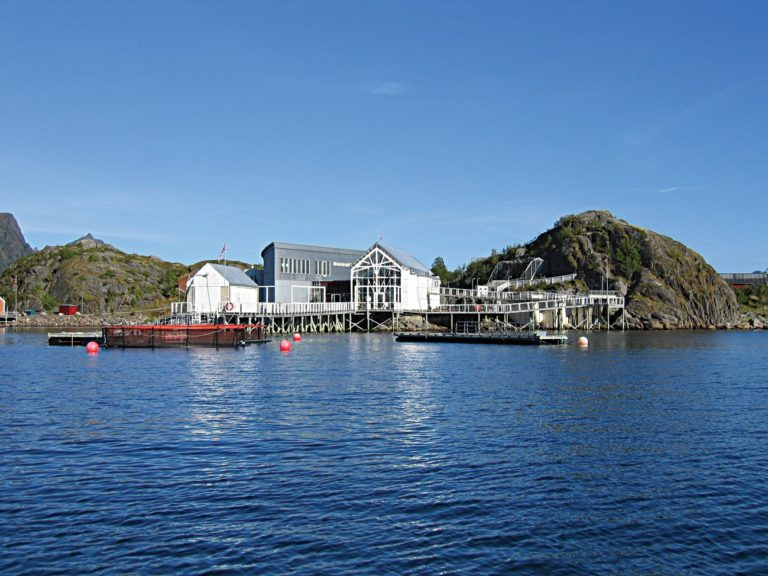 The aquarium situated in Storvågan © Lofotakvariet