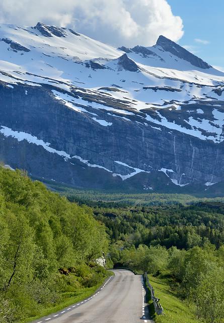 Snø og nyutsprunget løv © Jarle Waehler