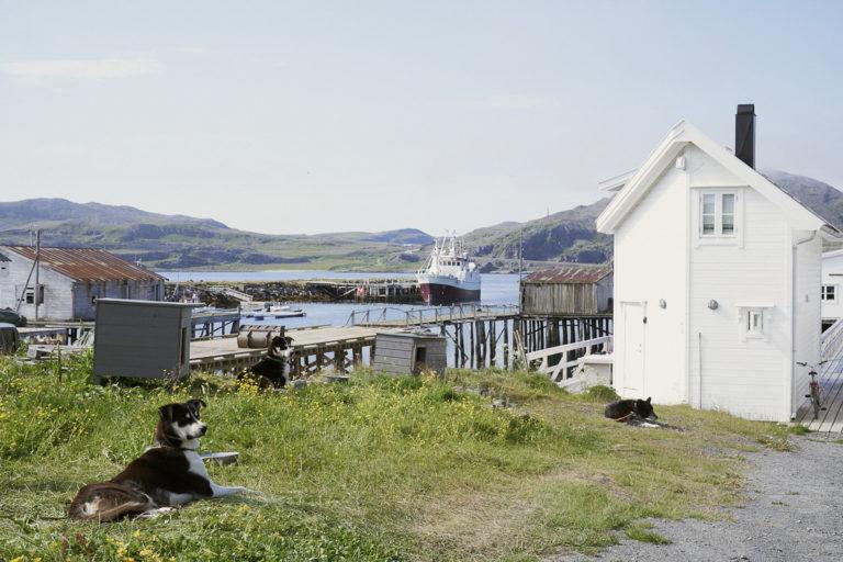 Fiskebruket Lovisenborg  i Kongsfjord © Emile Holba
