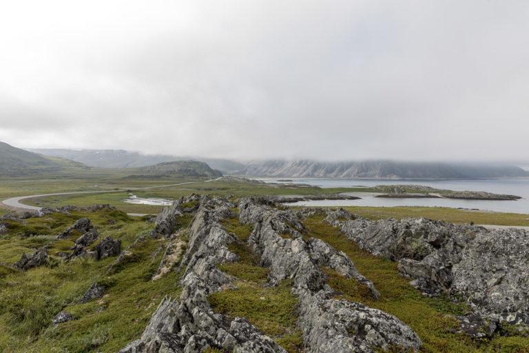 Frodig landskap inne i fjordene © FotoKnoff