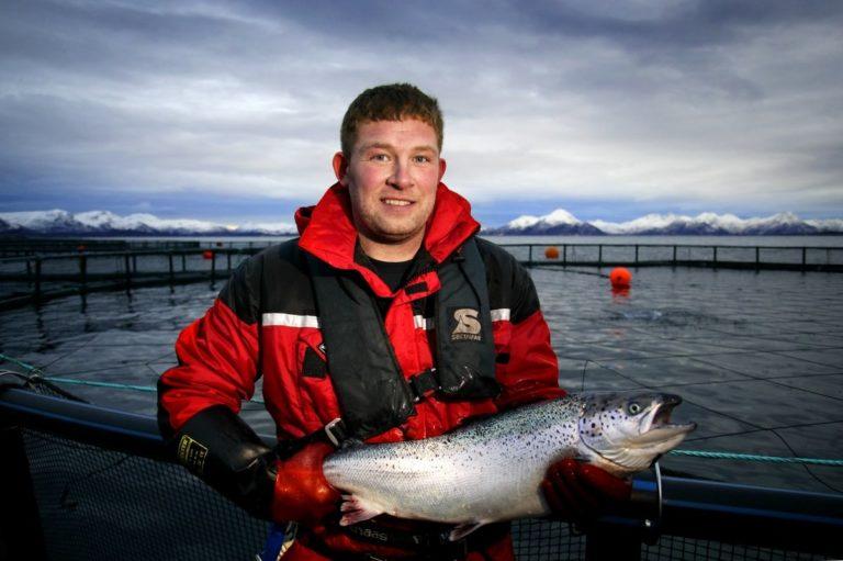 Catch of the day © Akvakultur i Vesterålen