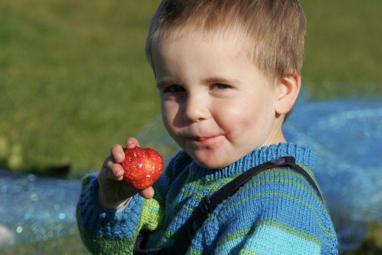 Jordbær er sommerlykke © Frank Andreassen
