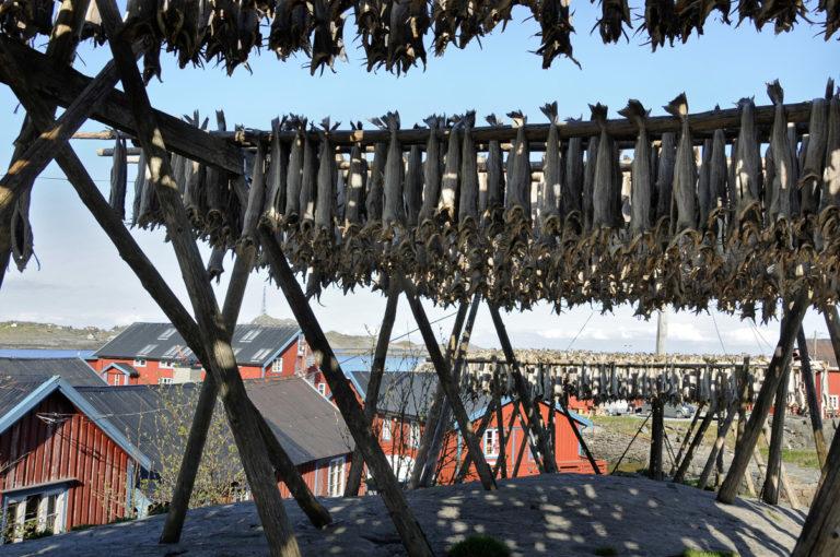 Dried fish at Å © Steinar Skaar/Statens vegvesen